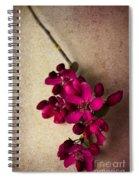 Cherry Pie Spiral Notebook