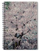 Cherry Pink Spiral Notebook