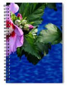 Cherry Throat Spiral Notebook