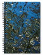 Cherry Tree Reflection Spiral Notebook