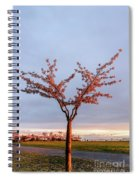 Cherry Tree Standing Alone In A Park, Lit By The Light  Spiral Notebook