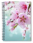 Cherry Tree Twig On Blue Spiral Notebook