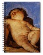 Cherub Sleeps 1627 Spiral Notebook