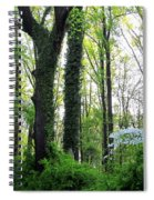 Chesapeake Oldgrowth Forest Spiral Notebook