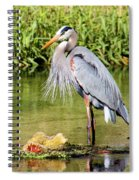 Chest Feathers Spiral Notebook