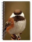 Chestnut-backed Chickadee  Spiral Notebook