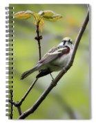 Chestnut Sided Warbler 2 Spiral Notebook
