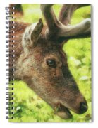 Chewing The Cud Spiral Notebook