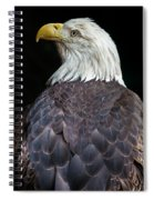 Cheyenne The Eagle Spiral Notebook