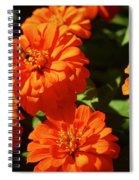 Chicago 2621 Spiral Notebook