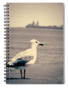 Chicago Seagull Spiral Notebook