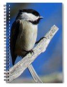 Chickadee Moments Spiral Notebook