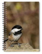 Chickadee On Wooden Fence Spiral Notebook