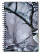 Chickadee Rain Spiral Notebook