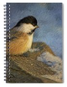 Chickadee Winter Perch Spiral Notebook