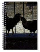 Chicken In Silhousette Spiral Notebook