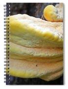 Chicken Of The Woods Spiral Notebook