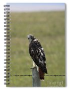 Chickenhawk Spiral Notebook