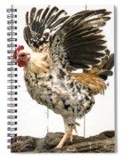 Chickens In Bird In Hand 2 Spiral Notebook
