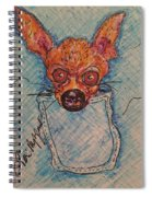 Chihuahua In A Pocket Spiral Notebook