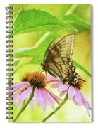 Child Of Sun And Summer Spiral Notebook