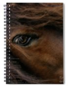 Child Of The Sun Spiral Notebook