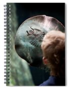 Child Watching Ray Fish Spiral Notebook