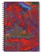 Children 12 Spiral Notebook
