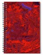 Children 14 Spiral Notebook