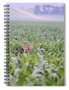 Children Of The Corn Spiral Notebook