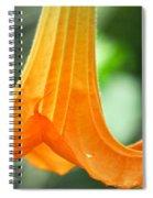Children's Garden Angel's Trumpet Spiral Notebook
