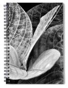 Children's Garden Leaves Spiral Notebook