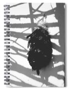 Chiles Spiral Notebook