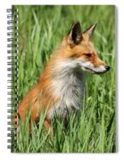 Chillin Vixen  Spiral Notebook
