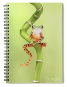 Chilling Tiger Leg Monkey Tree Frog Spiral Notebook