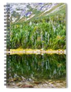 Chimney Pond Reflections 2 Spiral Notebook