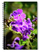 China Girl Spiral Notebook