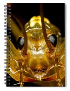 Chinese Cave House Centipede Spiral Notebook