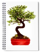 Chinese Elm Bonsai Tree Spiral Notebook