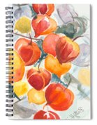 Chinese Lanterns - Symbol Of Friendship Spiral Notebook