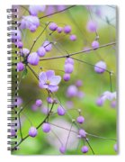 Chinese Meadow Rue Flowers Opening Spiral Notebook