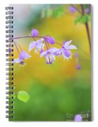 Chinese Meadow Rue Spiral Notebook