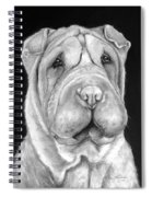 Chinese Sharpei Spiral Notebook