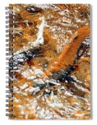 Chinook In Cottage Lake Creek Spiral Notebook