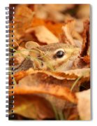 Chipmunk Among The Leaves Spiral Notebook