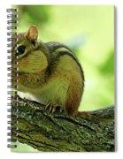 Chipmunk Cheeks Spiral Notebook