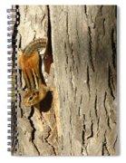 Chipmunk In Fall Spiral Notebook