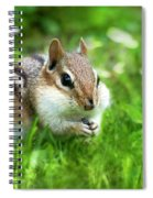 Chipmunk Saving Seeds Spiral Notebook