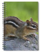 Chippy On The Move Spiral Notebook