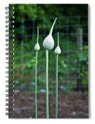 Chive Triad Spiral Notebook